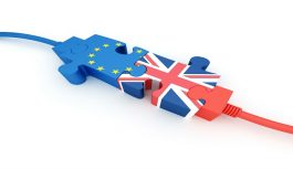 A Brexit Survivor's Guide Webinar for Exporters