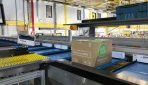 Jersey Post and Skillweb creates seamless customs processing